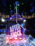 AfterShock Bottleluge